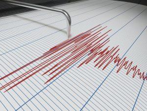 EMSC je prvo kritizirao Zagrepčane zbog reakcija na potres, pa se ispričavao zbog nesporazuma